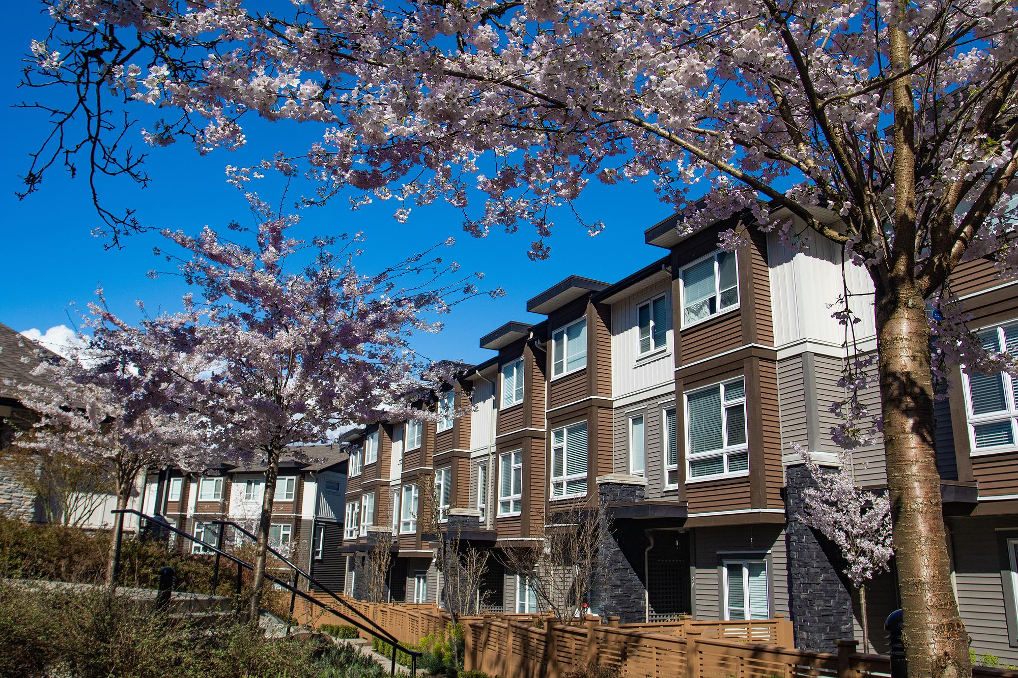 Low rise condo in the Cowichan Valley for sale